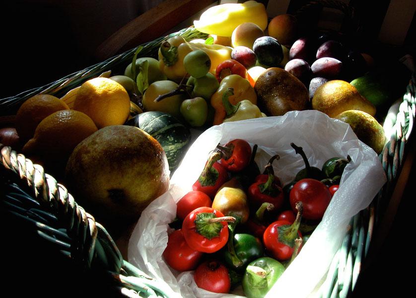 Weidenkorb, gefüllt mit farbenfrohem Obst und Feldfrüchten
